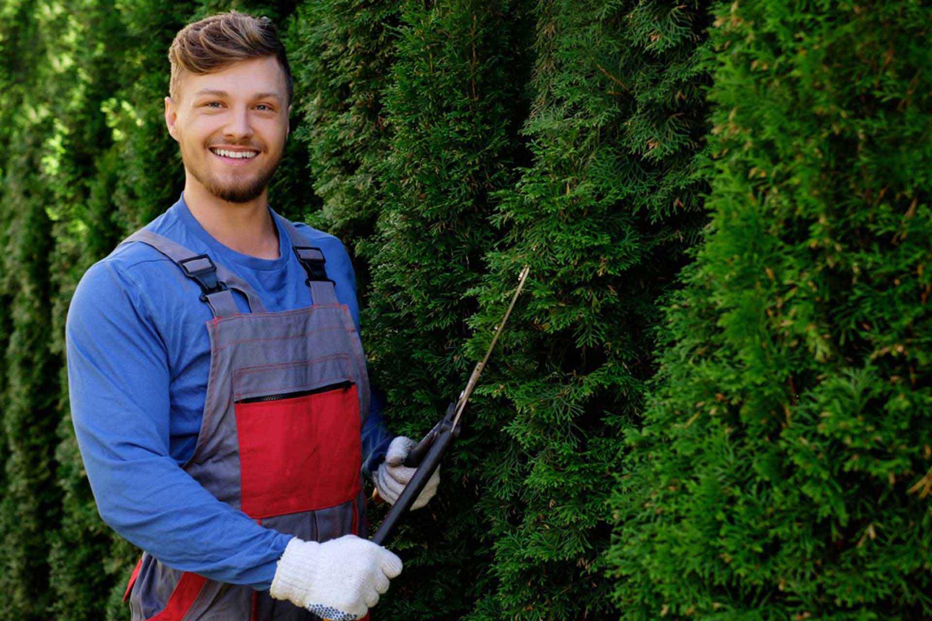 Calgary tree planting
